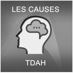TDAH: TROIS CAUSES IDENTIFIÉES